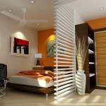 dizajn-gostinoj-sovmeshhennoj-so-spalnej-5