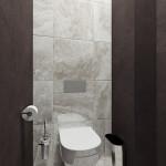 dizajn-tualeta-15
