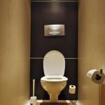 dizajn-tualeta-17