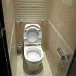 dizajn-tualeta-18