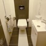 dizajn-tualeta-19