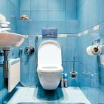 dizajn-tualeta-22