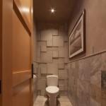 dizajn-tualeta-25