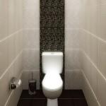 dizajn-tualeta-28