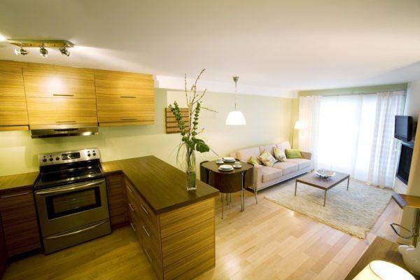 Элементом для зонирования может стать и кухонный гарнитур