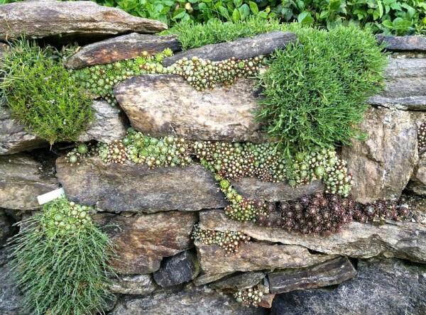Камни в единой цветовой гамме (как на фото) смотрятся гораздо органичнее