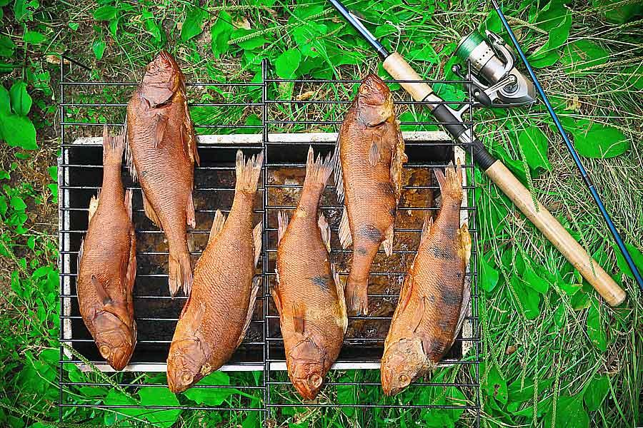 Коптильня рыба своими руками 145