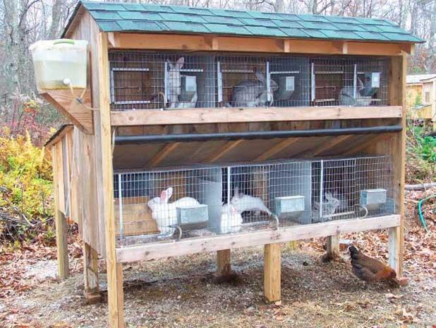 Сделать клетки для кроликов