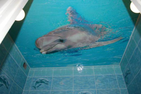 На фото — трехмерная фотопечать с морской тематикой, более подходящей к ванным