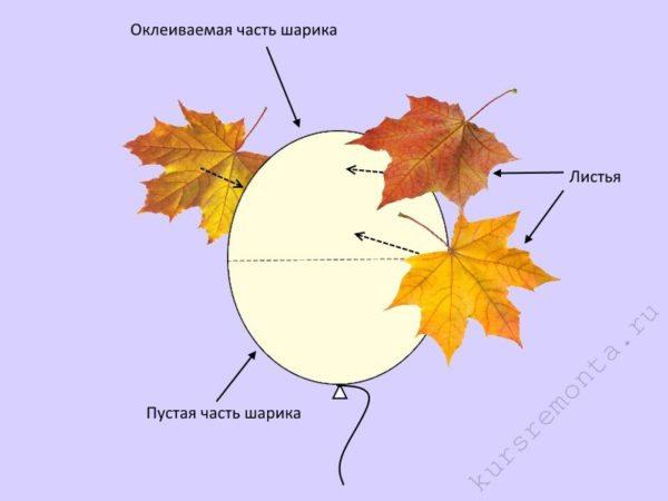 Принцип оклеивания воздушного шарика кленовыми листьями