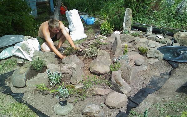 Процесс высадки растений