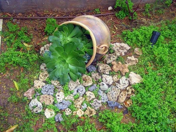 Высадка в горшке для ограничения разрастания
