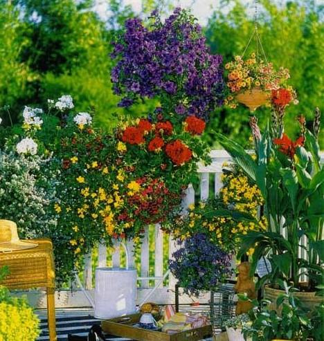 4 сотки дизайн садового участка