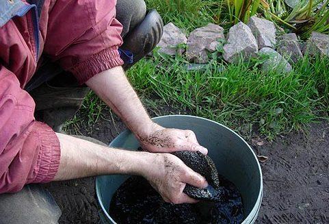 Чистка фильтра домашнего фонтана – дело грязное, но необходимое