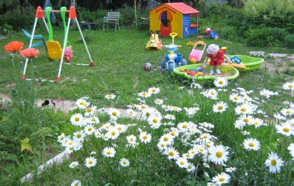 Детская игровая площадка на приусадебном участке.