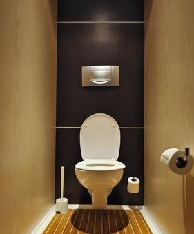 Как сделать туалет в картинках 332