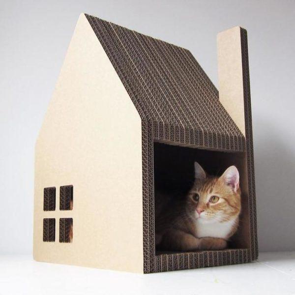 Домик из картона — самый дешёвый вариант жилья для вашего питомца