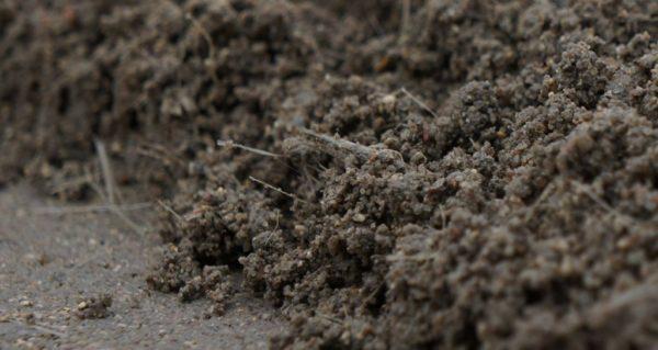 Фиброй можно заменить металлическую сетку при заливке бетонных полов
