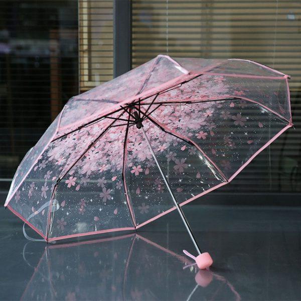 Обыкновенный зонтик