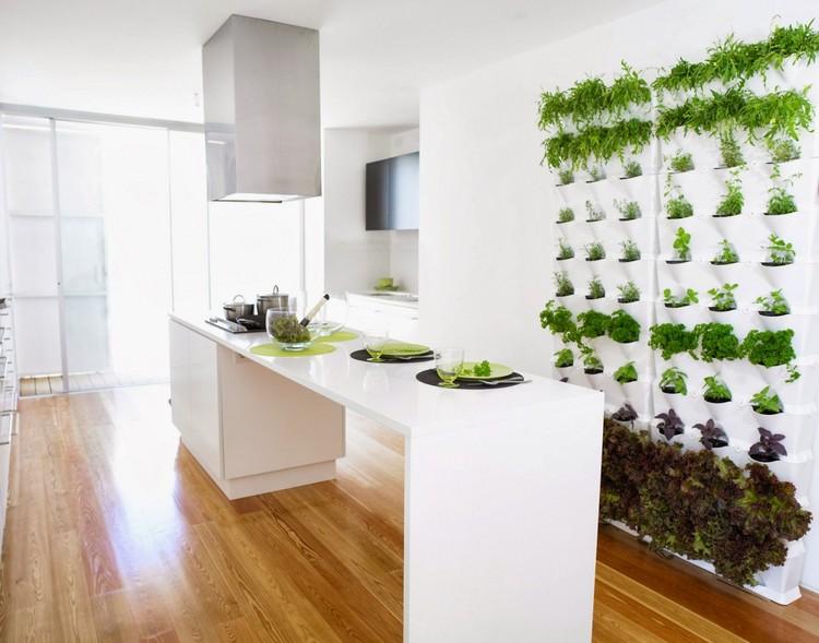 Небольшой огород зелени прямо на кухне