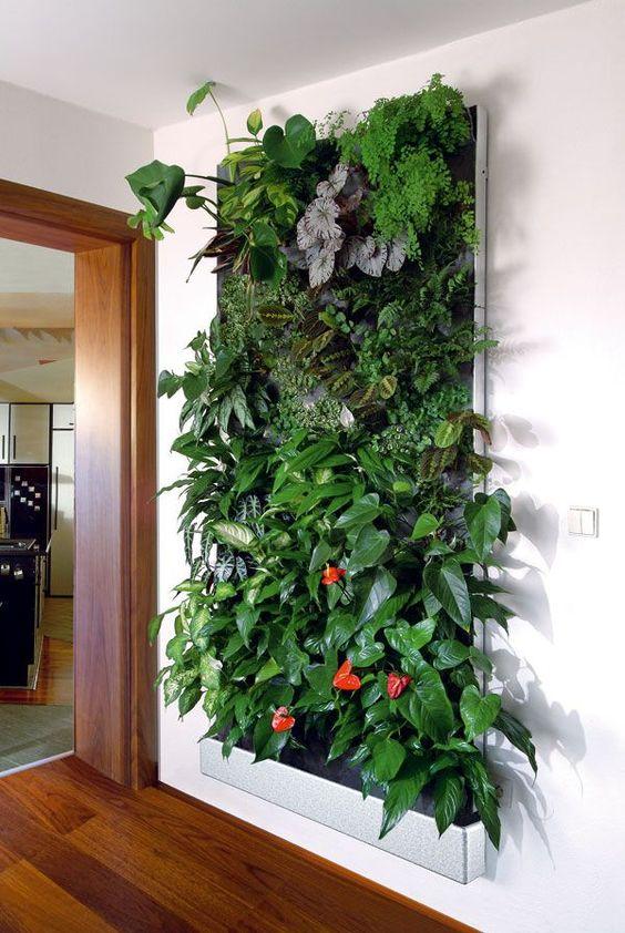 Пример оформления стены при помощи растений