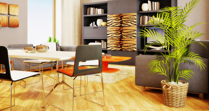 Оптимальное количество цветов в комнате - 2-3 растения