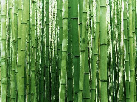 клей для бамбуковых обоев