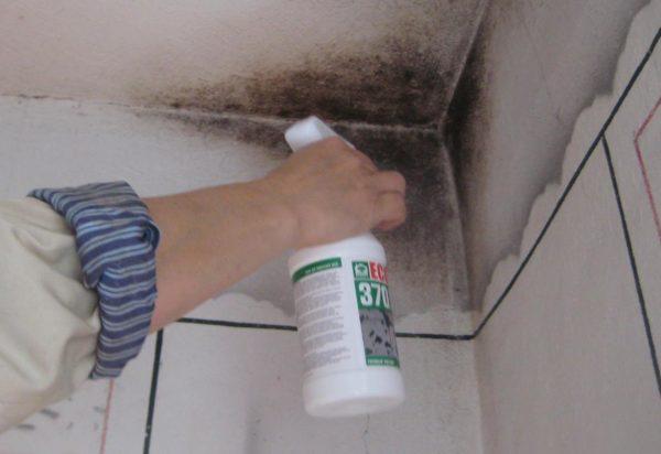 Плесень в первую очередь поражает места частых протечек от соседей и швы между кафельными плитками.