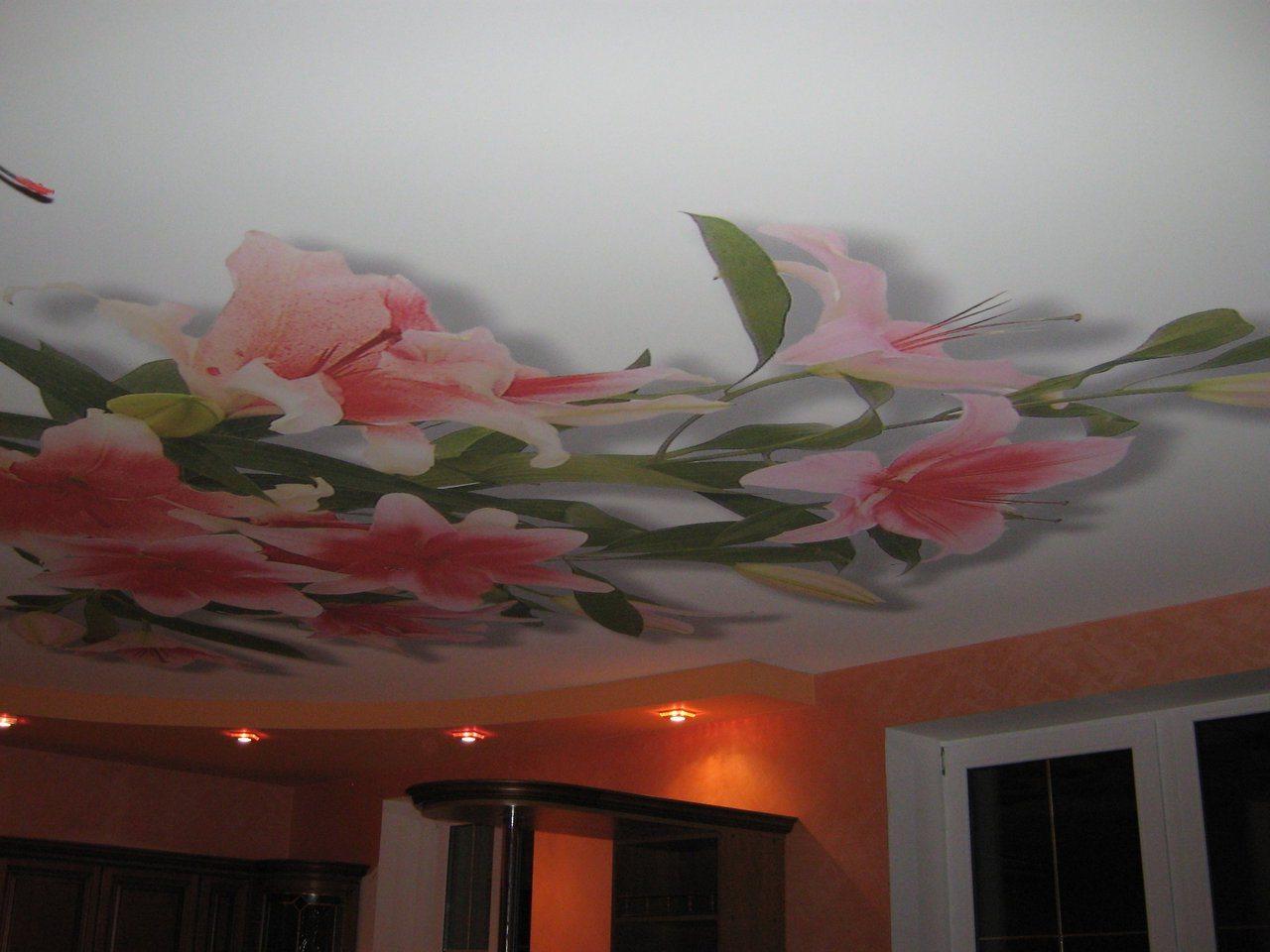 Потолки от французской компании Клипсо получили широкое распространение не только во Франции, но и во всем мире