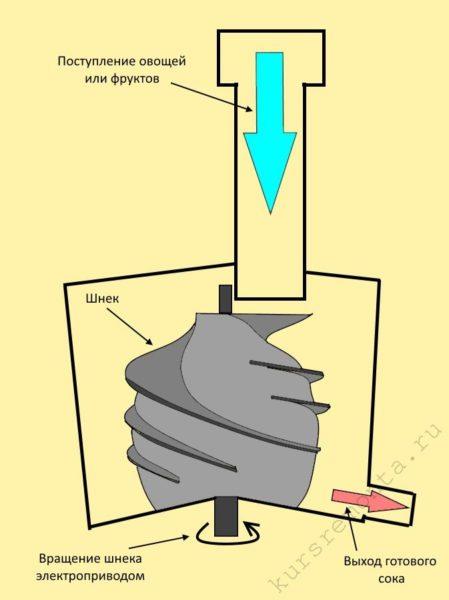 Принцип работы вертикальных шнековых соковыжималок