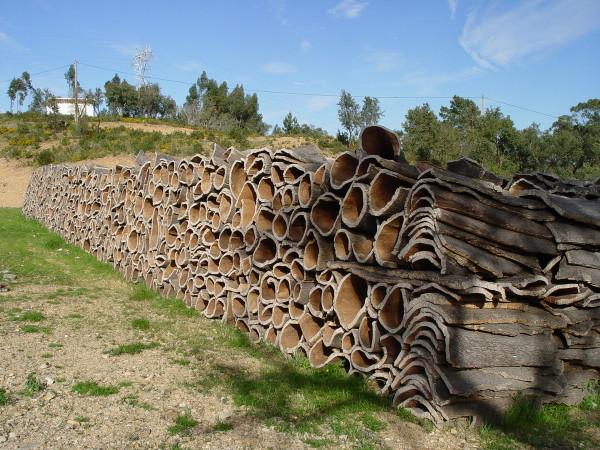 Так выглядит кора пробкового дуба — сырье для производства отделочных материалов
