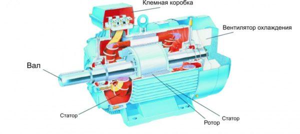 Устройство двигателя асинхронного типа позволяет ему работать долго и относительно бесшумно