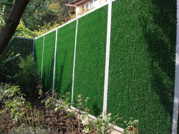 Живая изгородь хорошо сочетается с сеткой, закрывая ее и создавая зеленый ковер